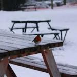 Zimą też może być ciepło